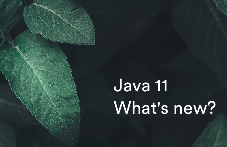 java-11-what-is-new