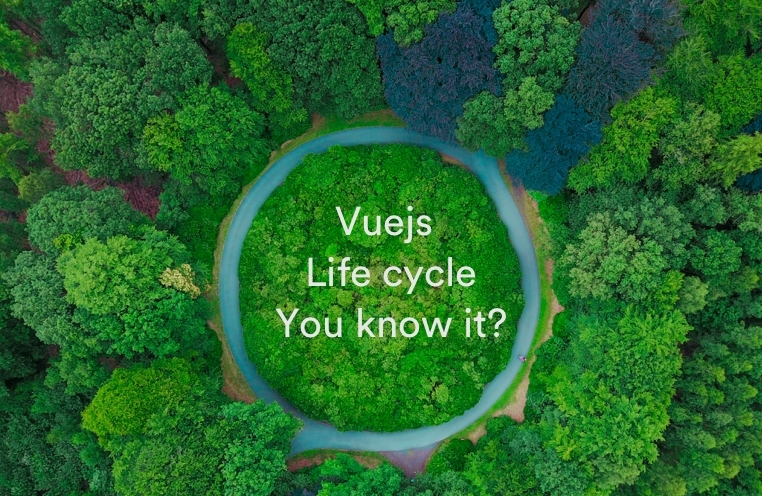 vuejs-life-cycle-you-know-it