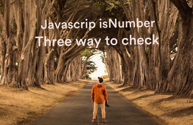 javascript-is-a-number-three-way-to-check